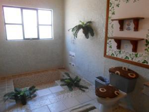 Casa Quinta Cobos, Priváty  Tequisquiapan - big - 3