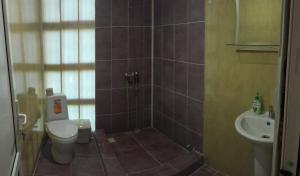 Guesthouse Chegem, Locande  Novy Afon - big - 1