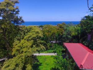 Jungle Reef Inn, Bed and breakfasts - Sandy Bay