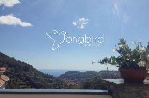 Songbird - AbcAlberghi.com