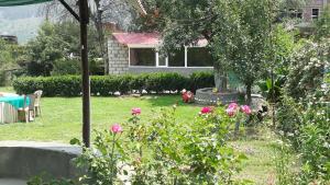 The Tara Villa, Bed and Breakfasts  Shamshi - big - 16