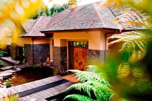 Treetops Lodge & Estate (1 of 34)