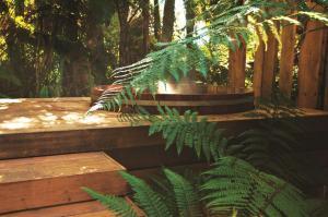 Treetops Lodge & Estate (16 of 34)
