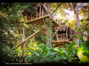 Jungle Treehouse by the Sea