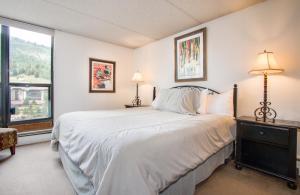 Mountain Plaza 504 Condo - Apartment - Copper Mountain