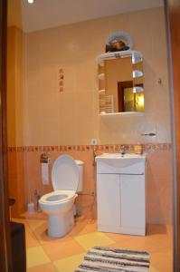 Sofijos apartamentai 2, Апартаменты  Вильнюс - big - 11