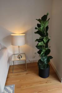 Loving Chiado, Апартаменты  Лиссабон - big - 211