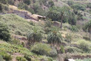 Casa Rural El Rincón de Antonia, Agulo