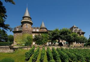 Château de Castel Novel (1 of 61)