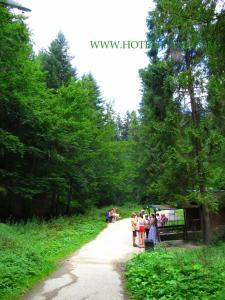 Mini Hotel Furmi, Inns  Skhidnitsa - big - 46