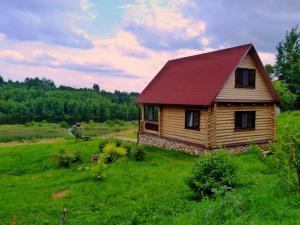 База отдыха Кудыкина Гора, Великие Луки