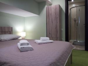 Hotel Salmer, Bed and breakfasts  Tbilisi City - big - 101