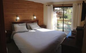 Termas De San Luis Pucon - Hotel - Palguín