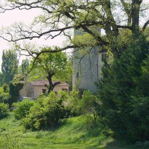 Chateau de Sadillac, Ville  Sadillac - big - 17