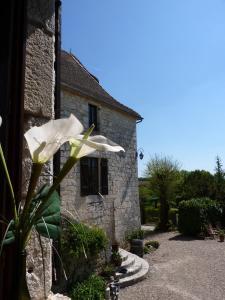Chateau de Sadillac, Ville  Sadillac - big - 21