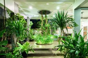 Residence 101, Hotely  Siem Reap - big - 63