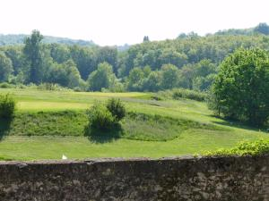Chateau de Sadillac, Ville  Sadillac - big - 38