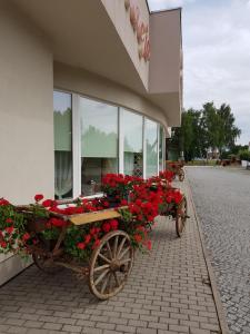 Hotel Ludwinka