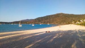 Boathouse Port of Airlie, Apartmány  Airlie Beach - big - 28