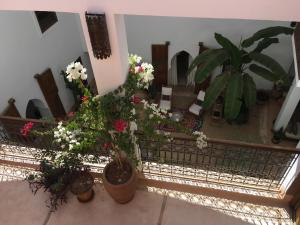 Riad UP (9 of 74)