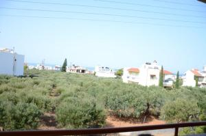 Alex Apartments, Aparthotels  Hersonissos - big - 46