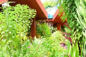 obrázek - Beach Villa Ukulhas