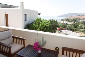 Ionia Studios Andros Greece