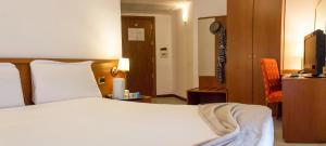 Excel Hotel Roma Ciampino, Szállodák  Marino - big - 35