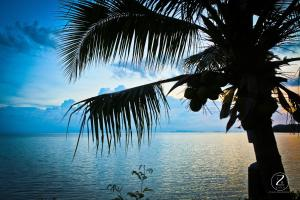 obrázek - Charu Bay Contemporary Sea Side Bungalow