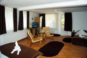Pension Carina, Гостевые дома  Бран - big - 47
