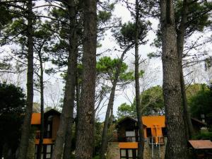 Cabañas Entreverdes, Turistaházak  Villa Gesell - big - 39