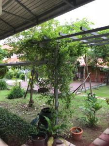 Sripiamsuk resort, Курортные отели  Ban Bang Phang - big - 23