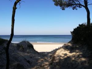 GRIBKO Seaside