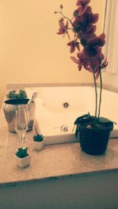 Pousada Casa das Flores
