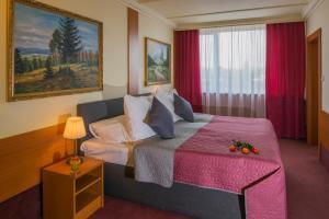 TOP HOTEL Praha - Praga