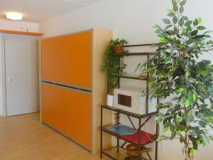 Apartment Rosablanche E31, Apartments  Siviez - big - 11