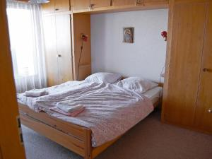 Apartment Dents Rousses C1, Appartamenti  Siviez - big - 8