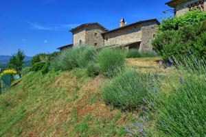 Dolce Vita, Apartments  Anghiari - big - 14
