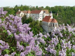 Schloss Haigerloch - Erlaheim