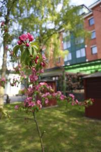 Europa City Amrita Hotel, Hotel  Liepāja - big - 75