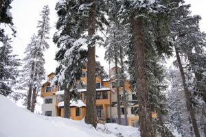 The Rosewood, Hotels  Tangmarg - big - 18
