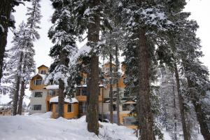 The Rosewood, Hotels  Tangmarg - big - 12