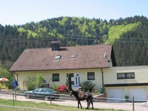 Ferienwohnung Dörflinger - Lierbach