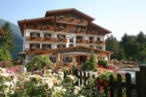 Hotel des Alpes - Molveno / Pradel