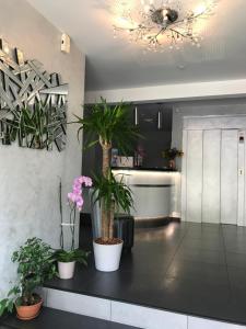 Location gîte, chambres d'hotes Logis Auv'hôtel dans le département Cantal 15