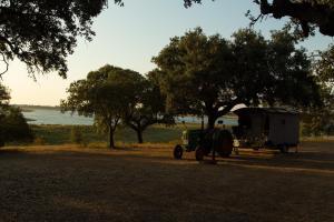 Markádia, Bauernhöfe  Odivelas - big - 96