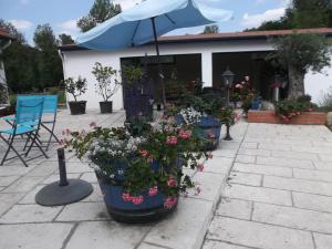 Domaine de Merete, Affittacamere  Lourdes - big - 30