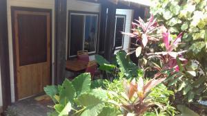 Roatan Backpackers' Hostel, Hostels  Sandy Bay - big - 156