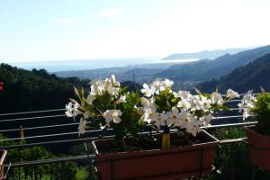 Ca di Cecco - Casa di Donata - AbcAlberghi.com