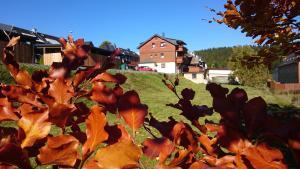 Ferienwohnung Elisabeth - Erlbach